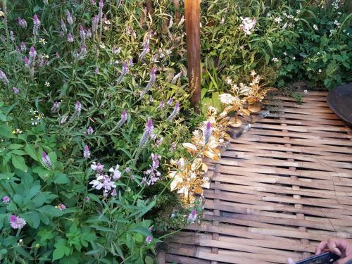 Bamboo bridge flanked by flowering shrubs