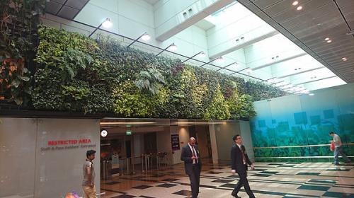 Internal Vertical Gardens